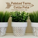 Painted Terra Cotta Pots