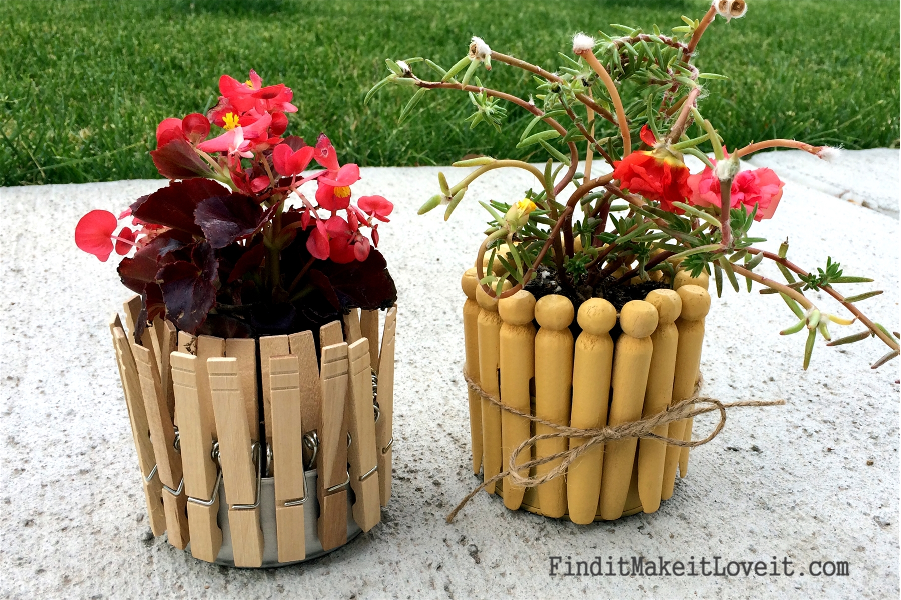 creative plant pots fresh living 10 find it make it