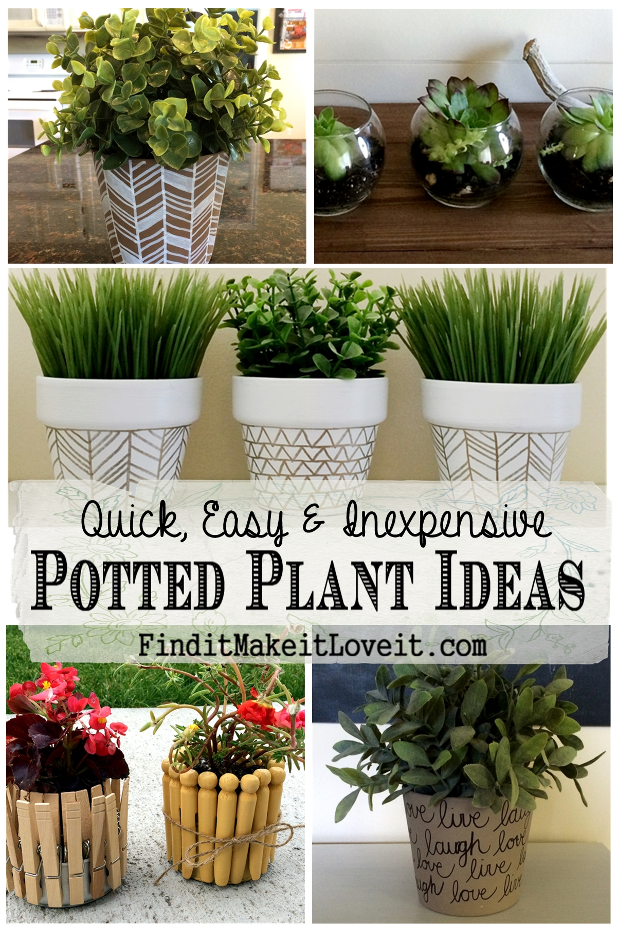 Fun with potted plants sharpies paint clothespins tin for Small patio plant ideas