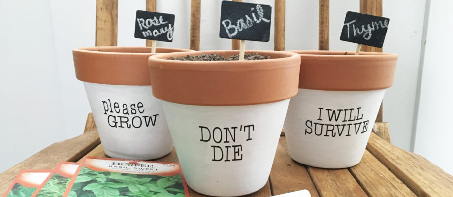 Funny Painted Planter Pots